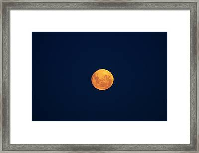 Full Moon Seen From Dunedin, South Framed Print by David Wall