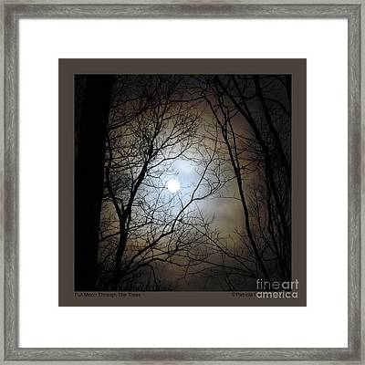Full Moon Through The Trees Framed Print