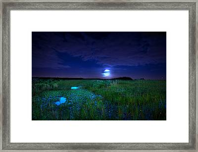 Full Moons And Fireflies Framed Print