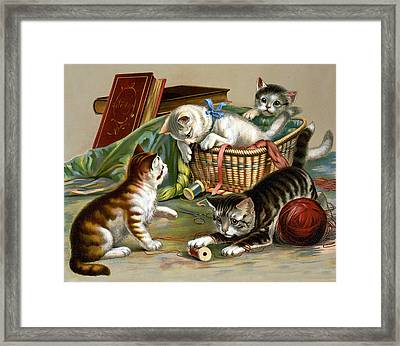Full Of Fun Framed Print by Unknown
