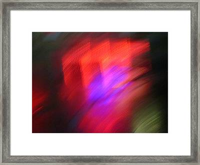 Full Of Life Framed Print by Guy Ricketts