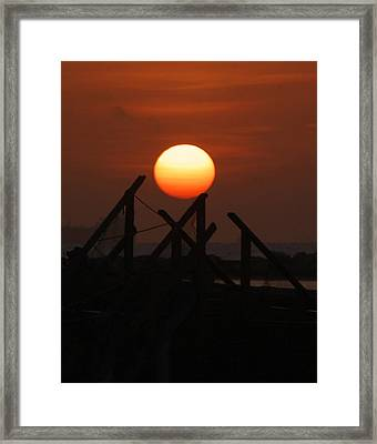 Framed Print featuring the photograph Full Sun by Leticia Latocki