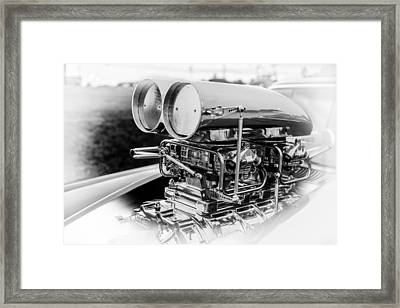 Fully Blown Framed Print