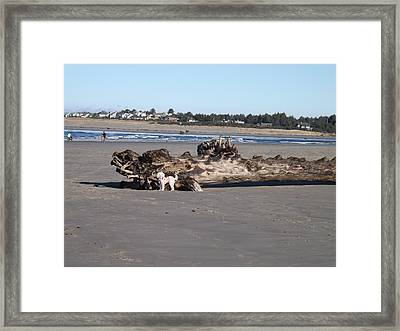 Fun At The Beach Framed Print by Priscilla Torres