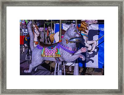 Fun Cat  Amusementt Ride Framed Print by Garry Gay