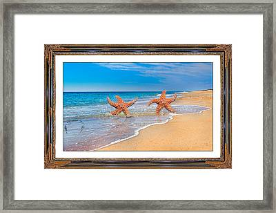 Fun For A Day Framed Print