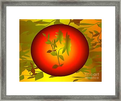 Fun In The Sun Framed Print by Gayle Price Thomas