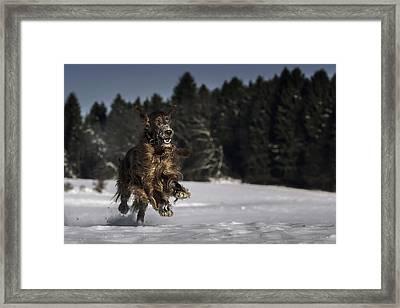 Fun On Snow Framed Print