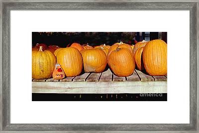 Framed Print featuring the photograph Fun Pumpkin by Tom Brickhouse
