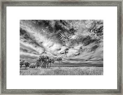 Fun Sky Framed Print