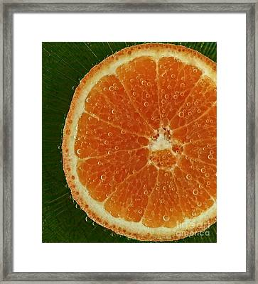 Fun With Fruit Orange Bubbles Framed Print by Inspired Nature Photography Fine Art Photography