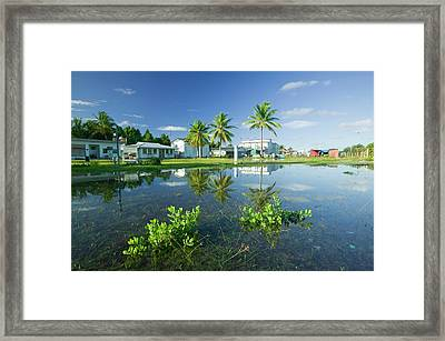 Funafuti Being Flooded By Sea Water Framed Print by Ashley Cooper