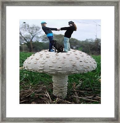 Fungi Rock Framed Print by Eric Kempson