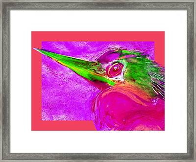 Funky Anhinga Snake Bird Water Turkey Art Prints Framed Print by Sue Jacobi