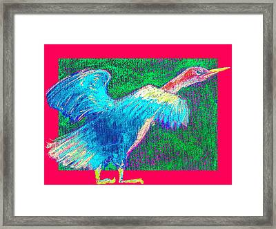 Funky Anhinga Snake Bird Water Turkey Framed Print by Sue Jacobi