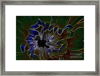 Funky Flower Framed Print by Judy Wolinsky