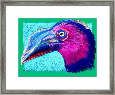 Funky Hornbill Bird Art Prints Framed Print by Sue Jacobi