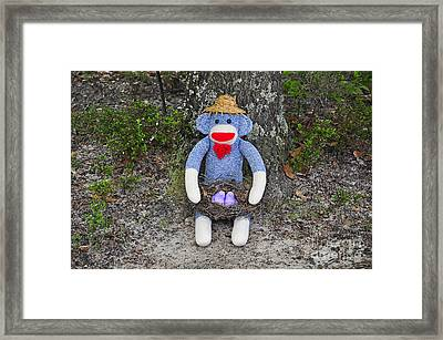 Funky Monkey - Purple Peeps Framed Print by Al Powell Photography USA