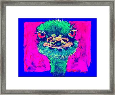 Funky Ostrich Cool Dude Art Prints Framed Print