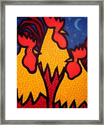 Funky Roosters Framed Print by John  Nolan