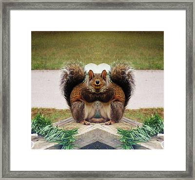Funky Squirrel Eating Framed Print