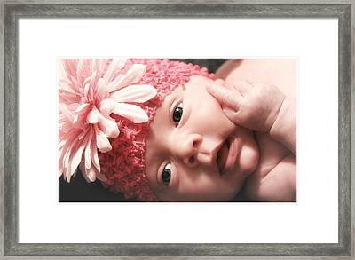 Funny Baby  Framed Print by Donna Brown