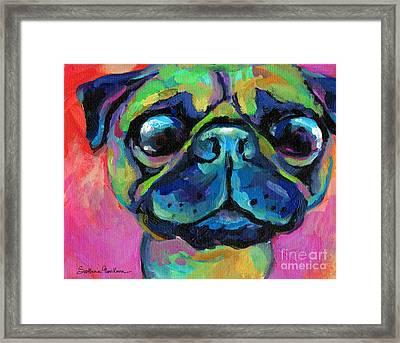 Funny Bug Eyed Pug  Framed Print by Svetlana Novikova