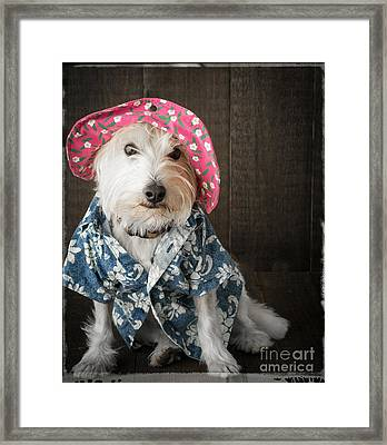 Funny Doggie Framed Print