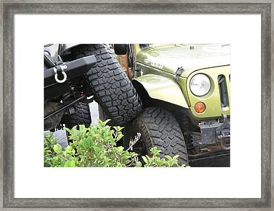 Funny Place To Park Framed Print
