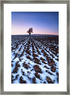 Furows In The Snow Framed Print by John Farnan