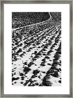 Furrows Framed Print by John Farnan