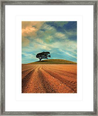 Furrows Framed Print by Mal Bray