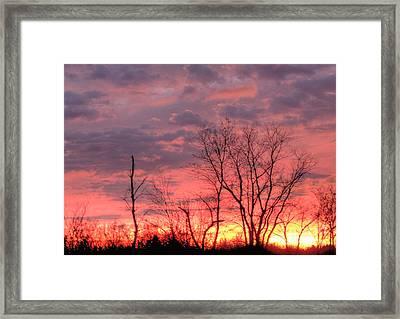 Fuschia And Purple Sunset Framed Print by Deborah Smolinske