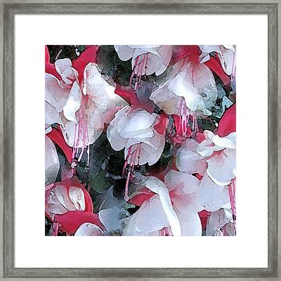 Fuschia Watercolor Confiding Love Framed Print by Patricia E Sundik