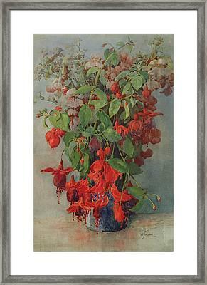 Fushia And Snapdragon In A Vase Framed Print by William Jordan