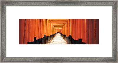 Fushima-inari Kyoto Japan Framed Print