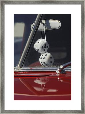 Fuzzy Dice 2 Framed Print by Jill Reger