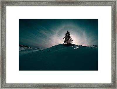 Fv4157, Will Datene Pine Tree On A Hill Framed Print by Will Datene