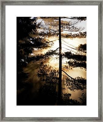 Fv5423, Perry Mastrovito Sunrise Though Framed Print by Perry Mastrovito
