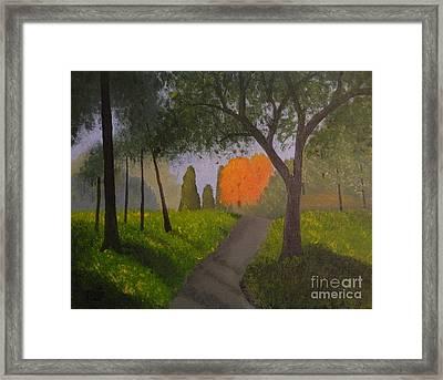 Gabby's Path Framed Print