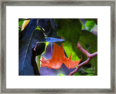Gabriel Blow Your Horn Framed Print