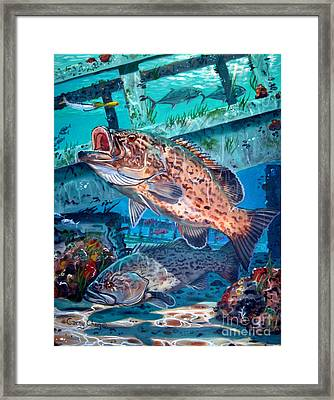 Gag Grouper In0030 Framed Print by Carey Chen