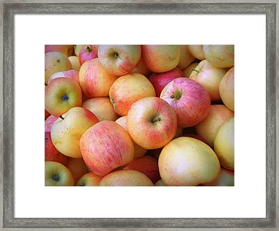 Framed Print featuring the photograph Gala Apples by Joseph Skompski