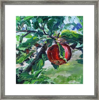 Gala Framed Print by Lori Pittenger