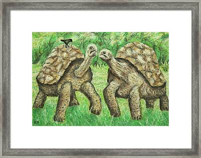Galapagos Giant Tortoise Framed Print by Ronald Haber