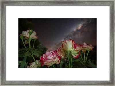 Galaxy Of Roses Framed Print by Jeremy Jensen