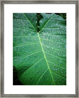Galaxy Rain Framed Print