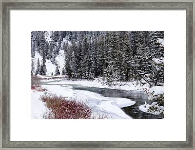 Gallatin River Framed Print by Meagan Suedkamp