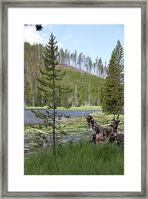 Gallatin River Yellowstone  Framed Print by Christiane Schulze Art And Photography