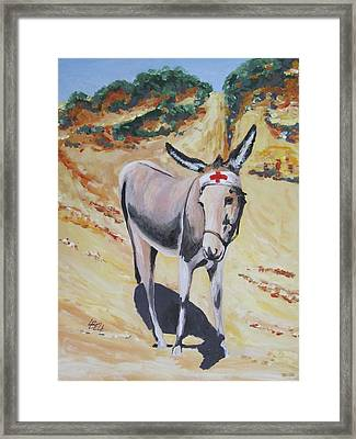 Gallipoli Donkey Framed Print by Leonie Bell
